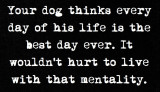 life - your dog thinks every day.jpg