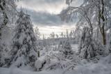 Taunus (Winter 2020/2021)