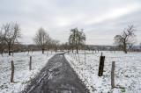 The Fields between Bad Homburg and Friedrichsdorf  (Winter 2020/2021)