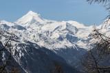 Pfyn-Finges Nature Park, Wallis, Switzerland