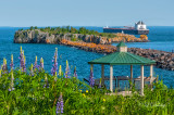 * 115.7 - Silver Bay: Gazebo, Lupines, and Boat