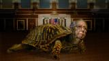 Mitch-the-Reptile.jpg
