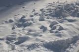 Bruce Smith - 03 - Snow Shadows