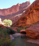 Escalante river - we had low water levels on this trip but there were still some deep pools around