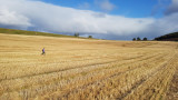 Oct 19 Hiking on the Black Isle from Munlochy to Bay Wood
