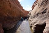 Wading down Boulder Creek narrows