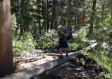 Heading up through the trees on good trail towards Piute Pass