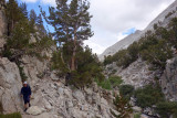 Descending Hilgard Branch below Lake Italy on rough trail that improved lower down