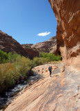Boulder creek heading upstream