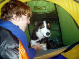 2004 Martina with Tina the collie during lambing season at farm near Tain