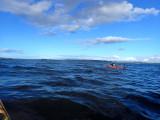May- Kayaking