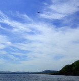 May- Munlochy bay south with osprey above