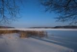 snowscapes