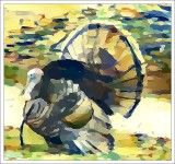 Another Turkey by Jim
