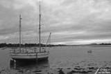 Île Tudy - Popoff