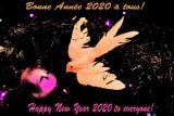 01-01-2020 : A new year / Une nouvelle année