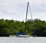 Abandoned Sailboat in Little Basin, Islamorada, Florida Keys, Florida 508