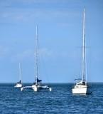 Mooring in Little Basin, Islamorada, Florida Keys, Florida 822