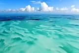 Florida Everglades National Park, Florida Keys, Islamorada, Florida 251
