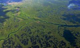 Lane River in Everglades National Park, Florida 311