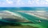 The Sandbar of Islamorada, Florida Keys, Florida 892