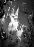 Snow balls on Red Mountain, Cascade Mountains, Washington 097