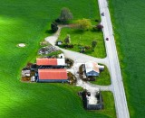 Farm in Skagit Valley near Mt Vernon, Washington State 253