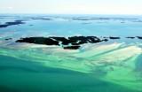 Mud Keys, Snipes Keys, Waltz Key Basin, Saddlebunch Keys, Florida Keys, Key West, Florida 575