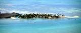 Little Munson Island, Florida Keys, Florida 616