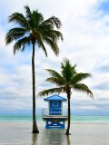 Lifeguard Station in Hollywood Florida 445a