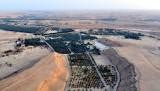 Dates Farm in Waseel Road, North of Ad Diriyah, Riyadh, Saudi Arabia 377