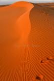 Sunrise on sand dune in Al Ghat Desert, Saudi Arabia 275