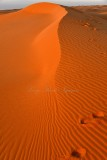 Sunrise on sand dune in Al Ghat Desert, Saudi Arabia 275