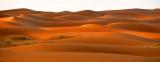 Golden Light at Sunrise on Saudi Desert, Al Ghat, Saudi Arabia 284