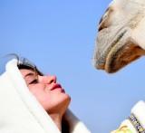 Logan and Mother Camel, Al Ghat, Saudi Desert, Saudi Arabia
