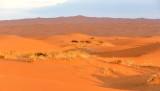 Saudi Desert at Sunsrise by Al Ghat, Saudi Arabia 269