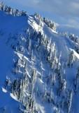 January 2020 Snow on Gunn Peak, Cascade Mountains, Washington 170