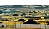Desert Camping in Saudi Desert, Thumamah National Park, Riyadh Region, Saudi Arabia 297