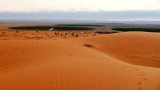 Early morning in Saudi Desert, Al Ghat Saudi Arabia 109