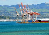 Port of Tauranga, Tauranga Bridge Marina, Tauranga, New Zealand 359