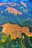 Fall Colors Above Washington State