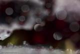 2N9B2540 abstract