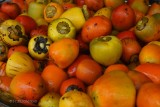 009-Fruits-du-palmier.jpg