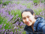 Mika in the Lavender Field