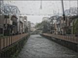 Umbrella Cam