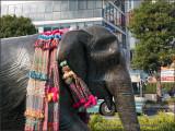 Hanako the Elephant