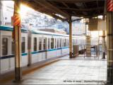 Metro Sunburst
