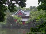 Inokashira Benzaiten in the Rain