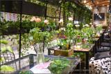 Flower Market Tea House