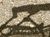 Shadow3147.jpg